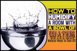 How To Humidify A Room With A Bowl Of Water