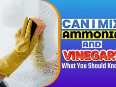 Can I Mix Ammonia And Vinegar