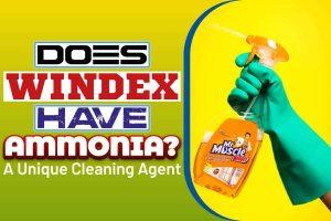 Does Windex Have ammonia